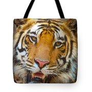 Prime Tiger Tote Bag