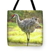Primping Sandhill Crane Tote Bag