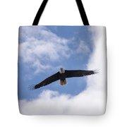 Prince Rupert Eagle Flight Tote Bag