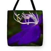 Princess Flower Flow Tote Bag