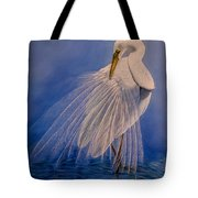 Princess Of The Mist Tote Bag
