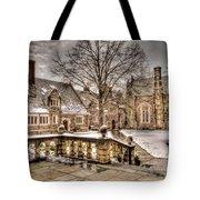 Snow / Winter Princeton University Tote Bag