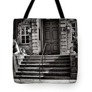 Princeton University Nassau Hall Tigers Tote Bag