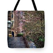 Princeton University Old Stairway Tote Bag