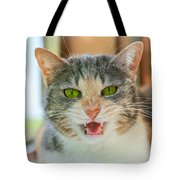 Priscilla A Cat Of My Mother Tote Bag