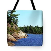 Pristine Beauty Of The French Tote Bag