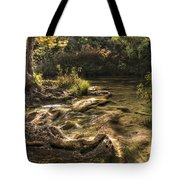 Private Retreat Tote Bag by Tamyra Ayles