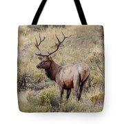 Prize Bull Elk Tote Bag