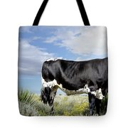 Prized Heiffer, Ojo De La Vaca, New Mexico, August 30, 2016 Tote Bag