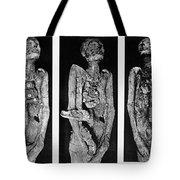 Processes Of Mummification Tote Bag