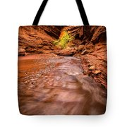 Professor Creek Canyon Tote Bag