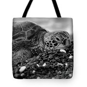Profile Hawaiian Sea Turtle Bw Tote Bag