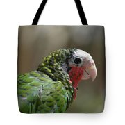 Profile Of A Conure Parrot Up Close Tote Bag