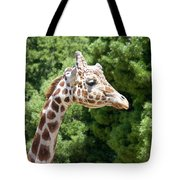 Profile Of A Giraffe Tote Bag