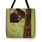 Profile Of A Male House Finch Tote Bag