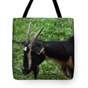 Profile Of A Pygmy Goat In A Farm Field Tote Bag