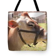 Profile Of Brown Cow Tote Bag