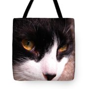 Profile Of Paws Tote Bag
