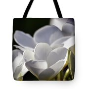 Promises In White Tote Bag