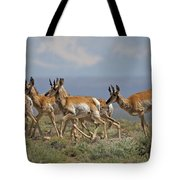 Pronghorn Antelope Running Tote Bag