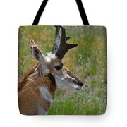 Pronghorn Buck Profile Tote Bag by Karon Melillo DeVega