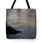 Proper Puffin Tote Bag