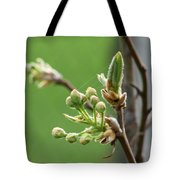 Prosperity Is Welcomed Tote Bag