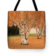 Prosser - Autumn Birch Trees Tote Bag