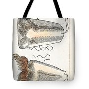 Prosthetic Noses, Ambroise Pare, 1561 Tote Bag