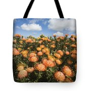 Protea Blossoms Tote Bag