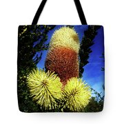 Protea Flower 5 Tote Bag