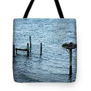 Protected Osprey Nest Tote Bag