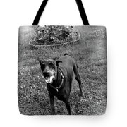 Protecting My Yard Not Tote Bag