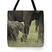 Protecting The Little One Tote Bag