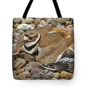 Protecting The Nest Tote Bag