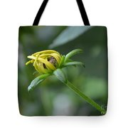 Protection From The Elements Tote Bag