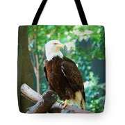 Proud Eagle Tote Bag