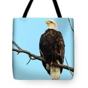 Proud Eagle Tote Bag