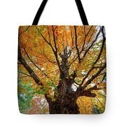 Proud Maine Tree In The Fall Tote Bag