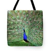Proud Peacock Tote Bag