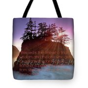 Proverbs102 Tote Bag