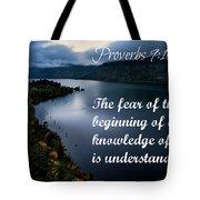 Proverbs114 Tote Bag