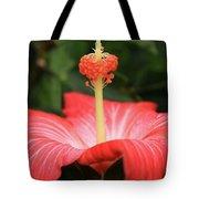 Provocative Hibiscus Tote Bag