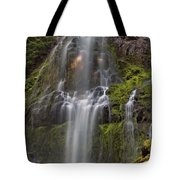Proxy Falls In Warm Light Tote Bag