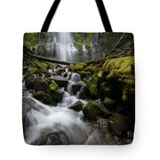 Proxy Falls Oregon 5 Tote Bag