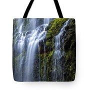 Proxy Falls Tote Bag