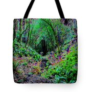 Psychedelic Fern Gully On Mt Tamalpais Tote Bag