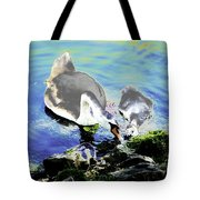Psychedelic Mute Swan And Cygnet Feeding Tote Bag