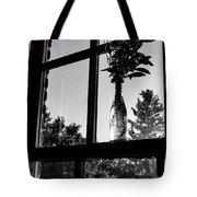 Pt 2 Flowers On A Windowsill Tote Bag