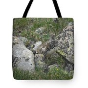 Ptarmigan Tote Bag